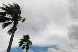49ff03b0fc071930b37045f4a8d0df70 m 300x200 - ダブル台風と嵐