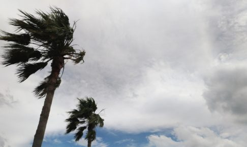49ff03b0fc071930b37045f4a8d0df70 m 486x290 - ダブル台風と嵐