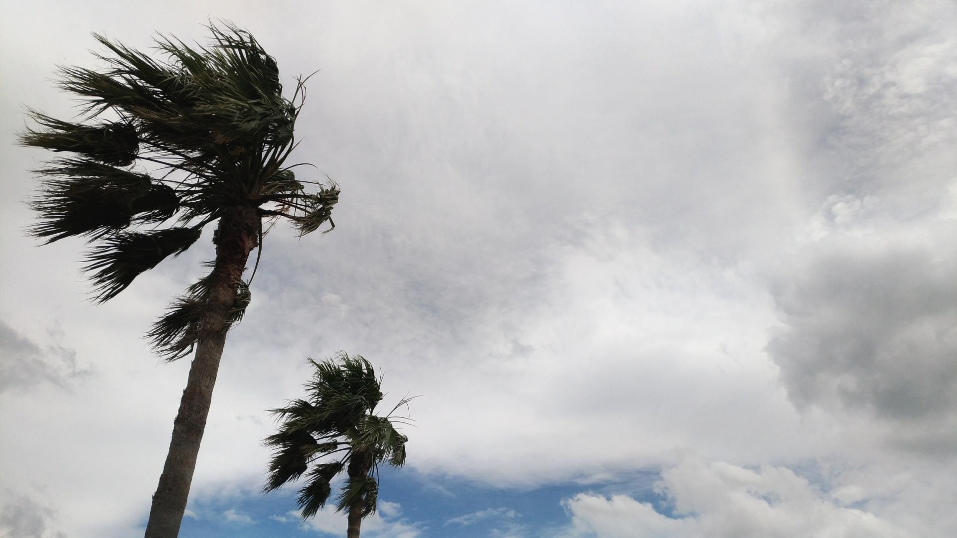 ダブル台風と嵐