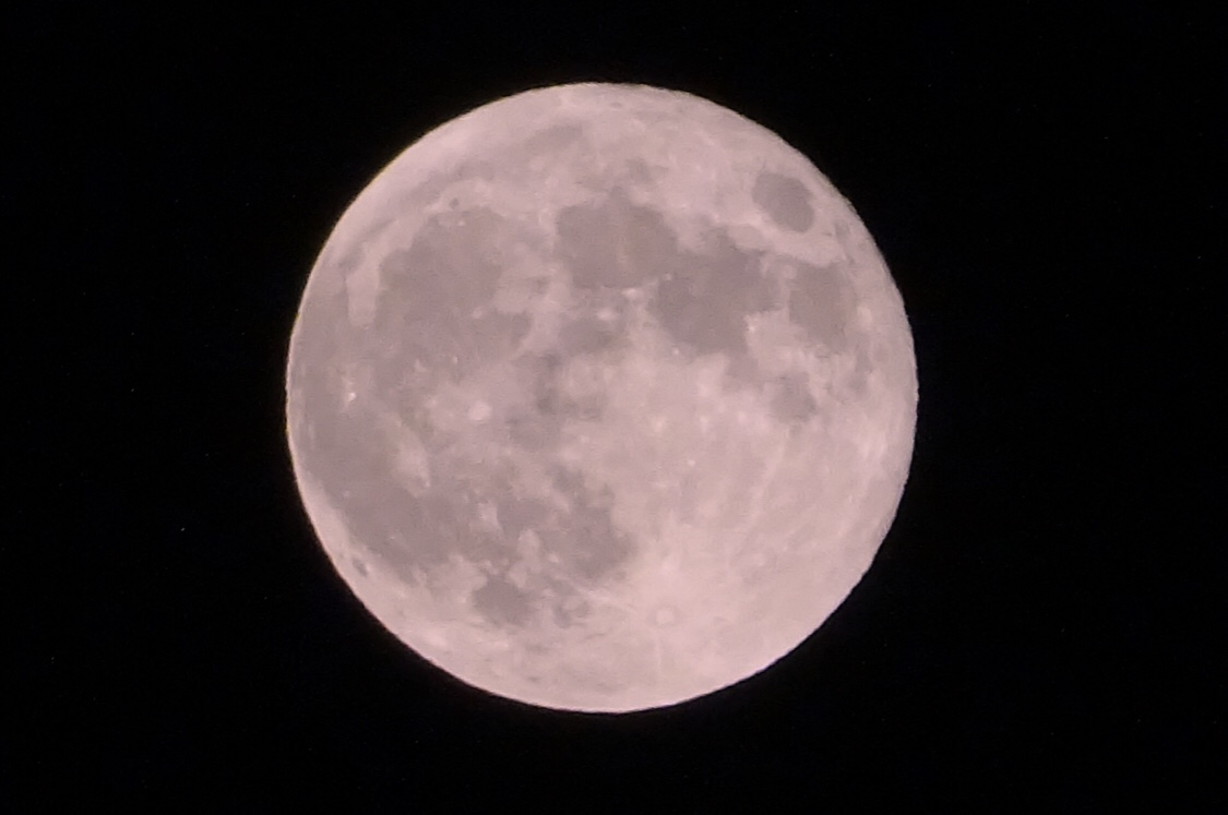 平成最後の満月はピンクムーン